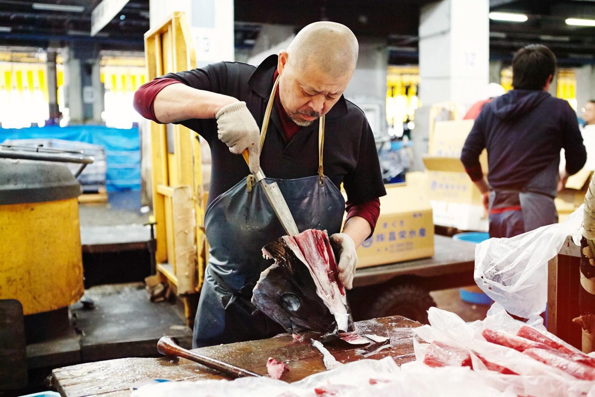 CAROLIN WINDEL Tsukiji Fishmarket, Tokyo (more-click here)