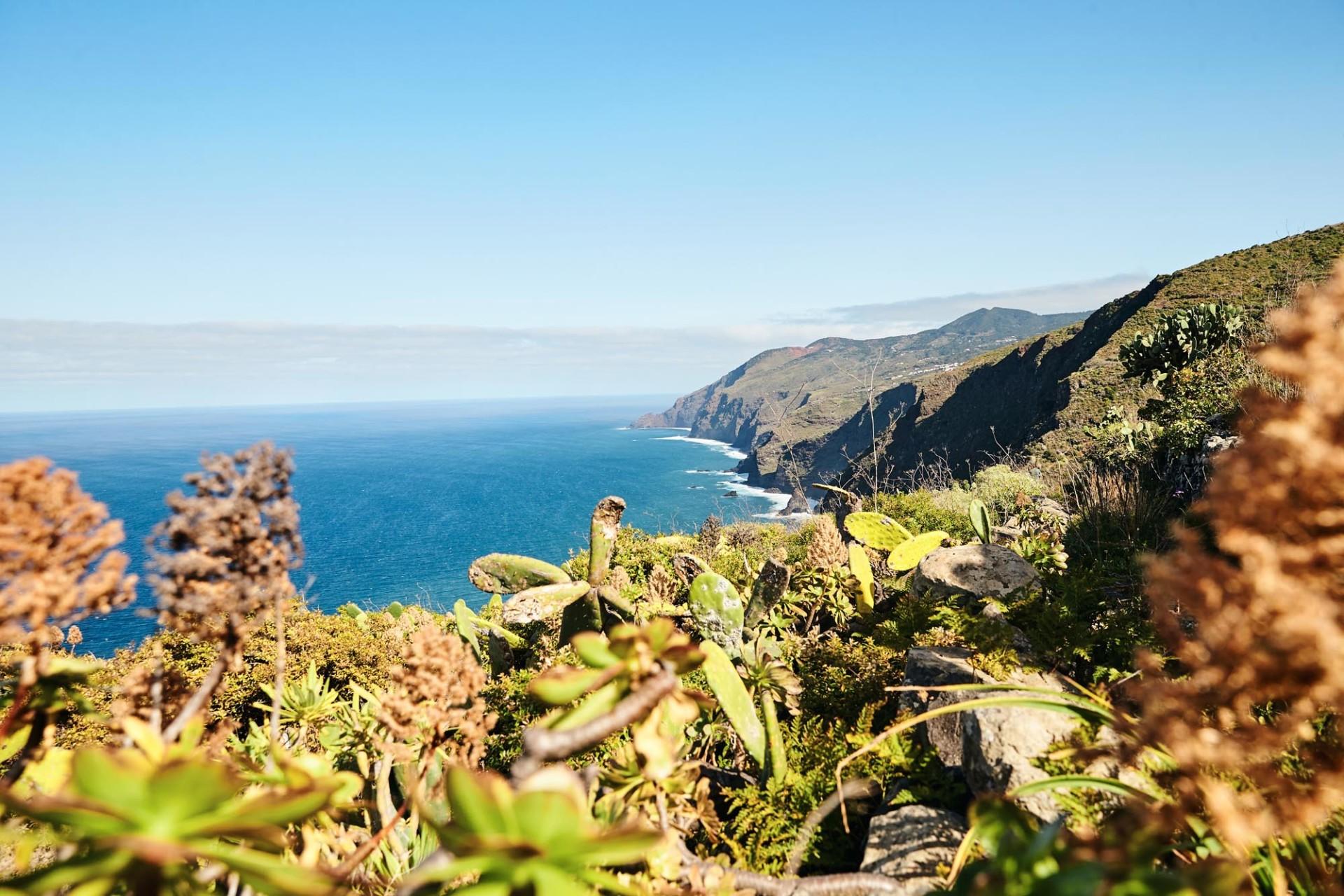 CAROLIN WINDEL La Palma, STERN